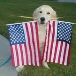 Happy and Safe - 4th of July!