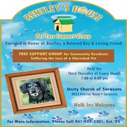 Bentley's House | Sarasota Dog