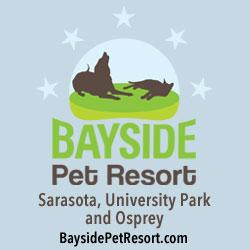 bayside pet resort | sarasota dog