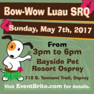 Bow Wow Luau - SRQ | Sarasota Dog