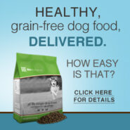 Healthy Dog Food Delivered | Sarasota Dog