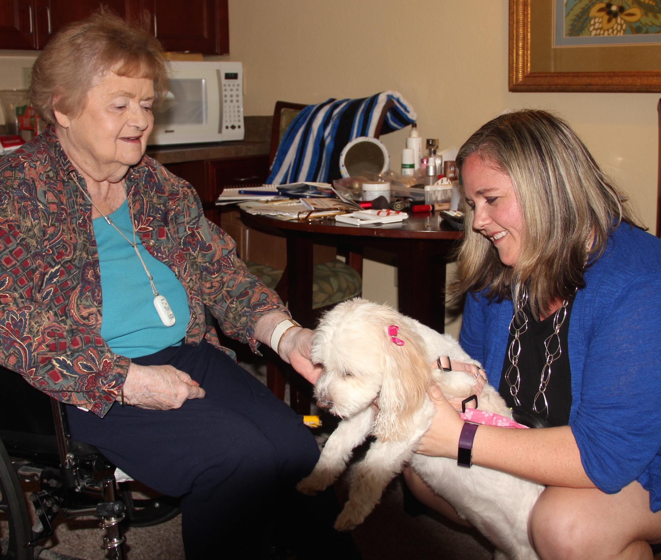 Amber and Bailey | Sarasota Dog
