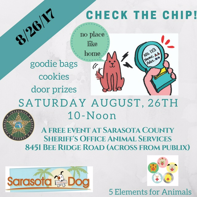 Check The Chip | Sarasota Dog