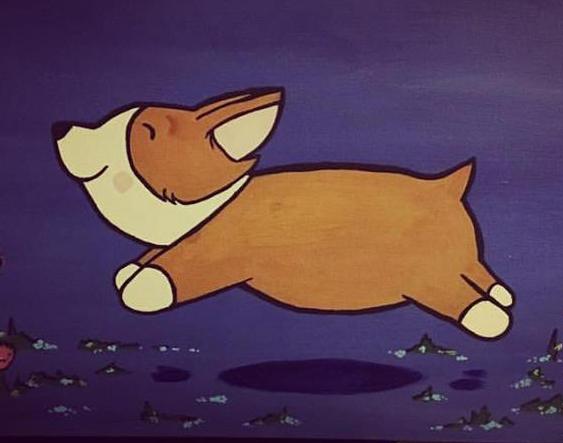 Corgi Joy | Sarasota Dog