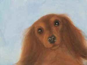 Mary McEwan Art | Sarasota Dog