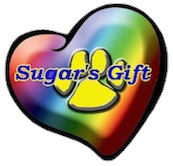 Sugar's Gift | Sarasota Dog