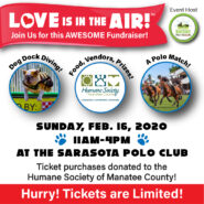 Love Is In The Air | Sarasota Dog