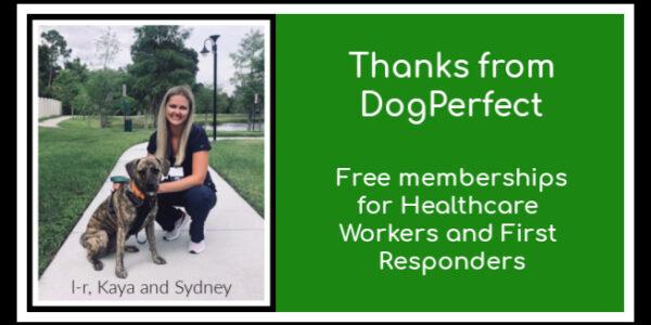 DogPerfect | Gives Back