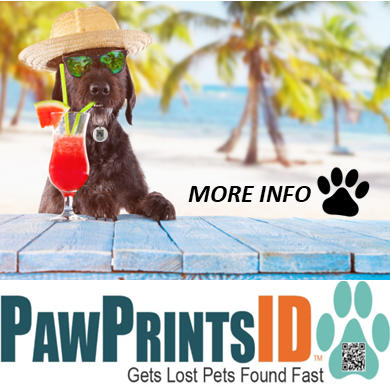 Paw Prints ID Gets Lost Pets Home | Sarasota Dog